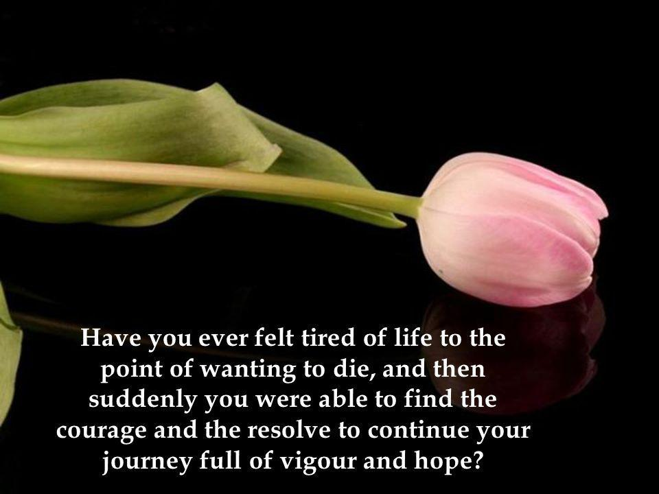 Have you ever felt tired of life to the point of wanting to die, and then suddenly you were able to find the courage and the resolve to continue your journey full of vigour and hope