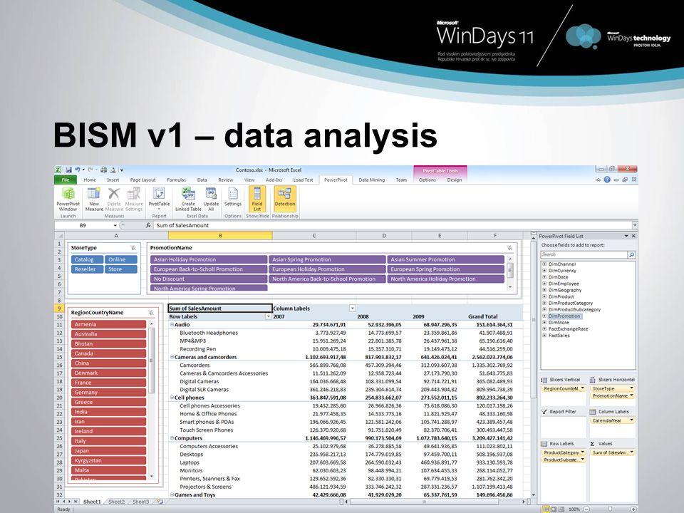 BISM v1 – data analysis