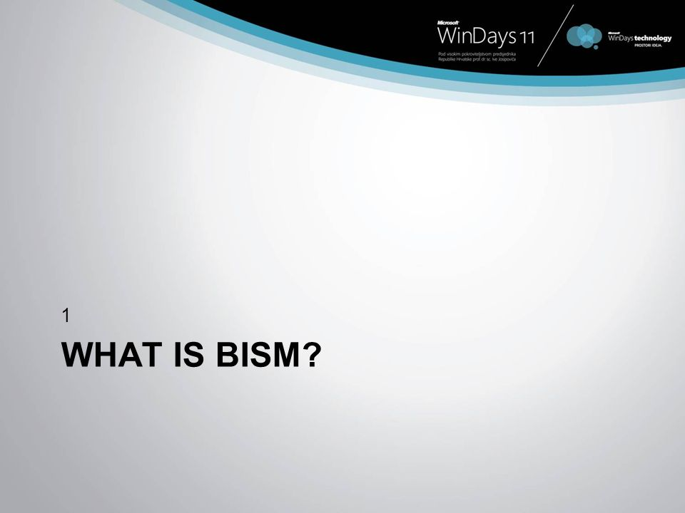 1 What is BISM