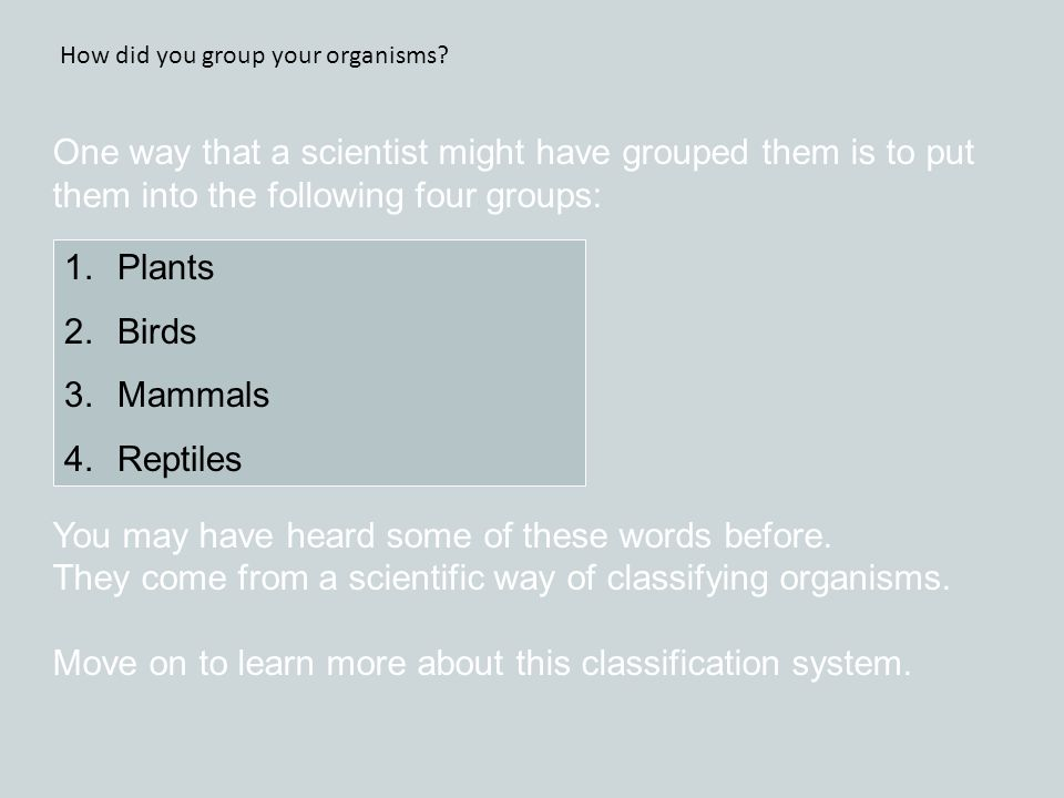 One way that a scientist might have grouped them is to put