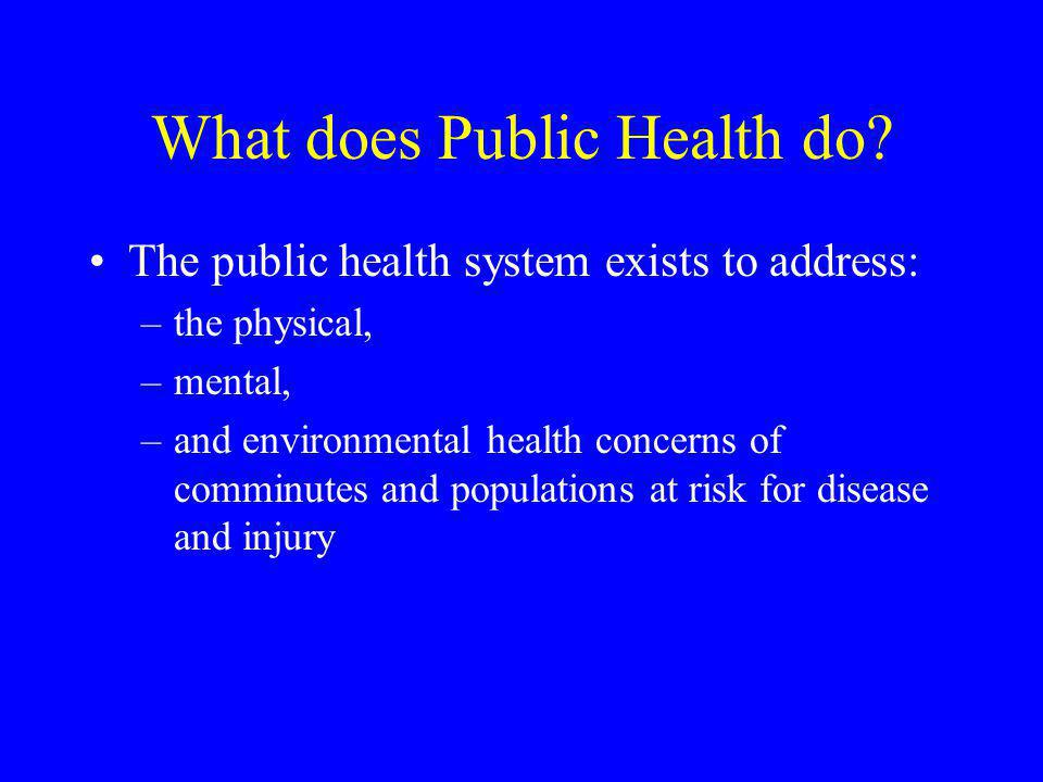 What does Public Health do