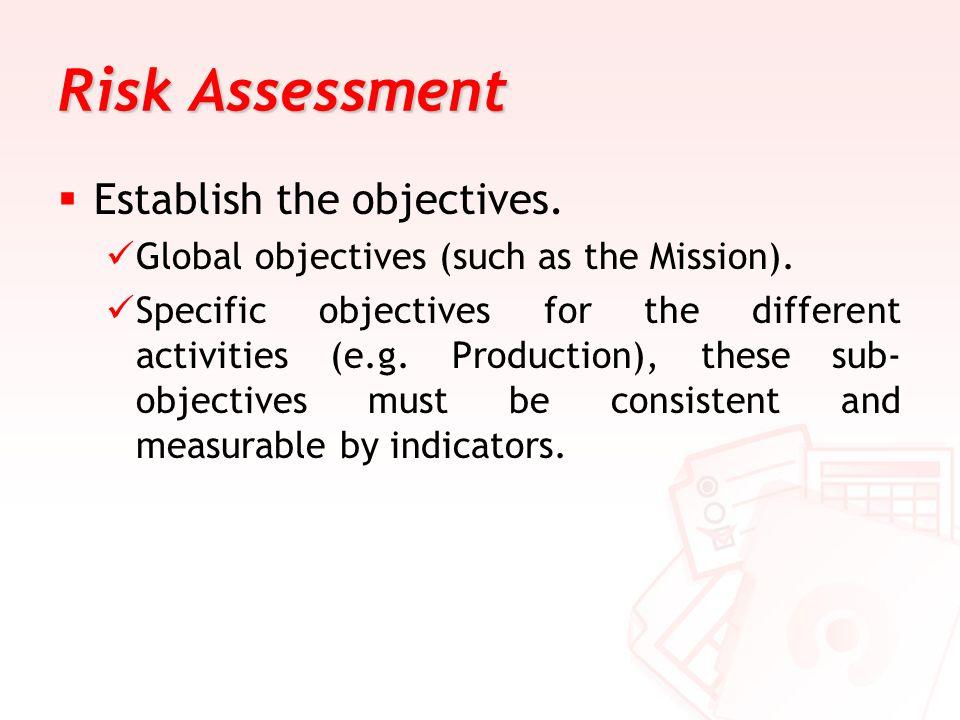 Risk Assessment Establish the objectives.