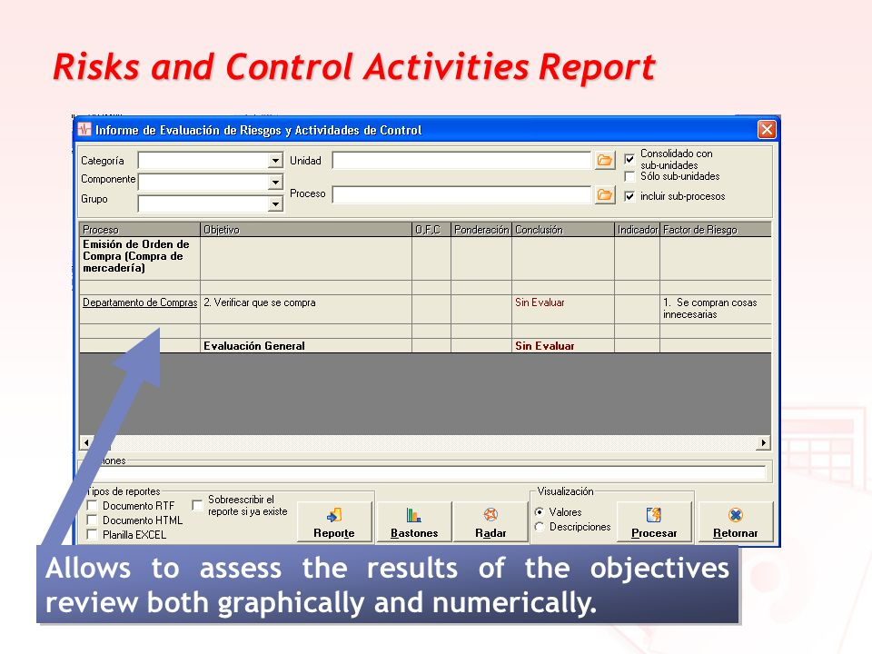 Risks and Control Activities Report