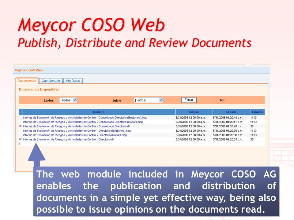 Meycor COSO Web Publish, Distribute and Review Documents