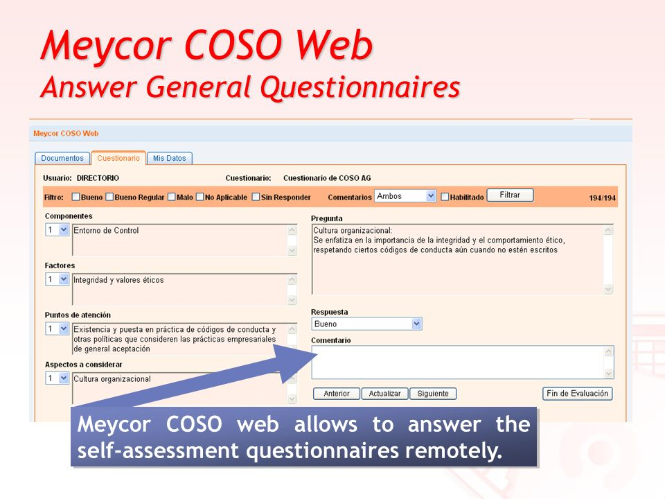 Meycor COSO Web Answer General Questionnaires