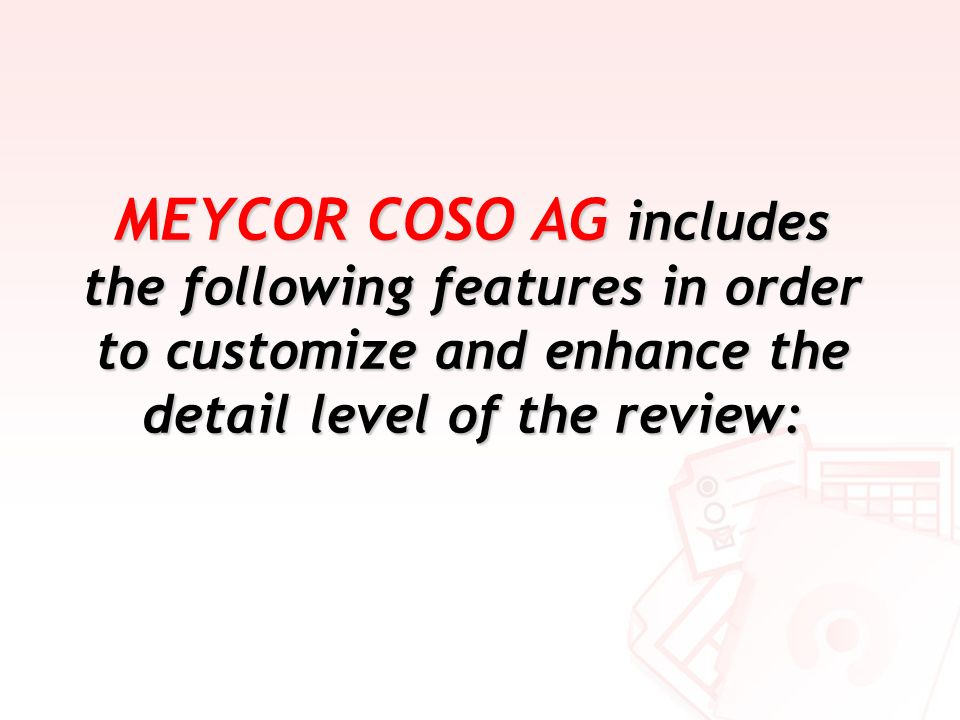MEYCOR COSO AG includes the following features in order to customize and enhance the detail level of the review: