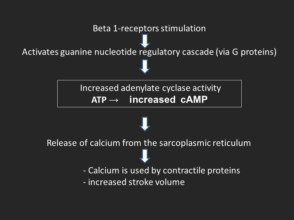 Beta 1-receptors stimulation