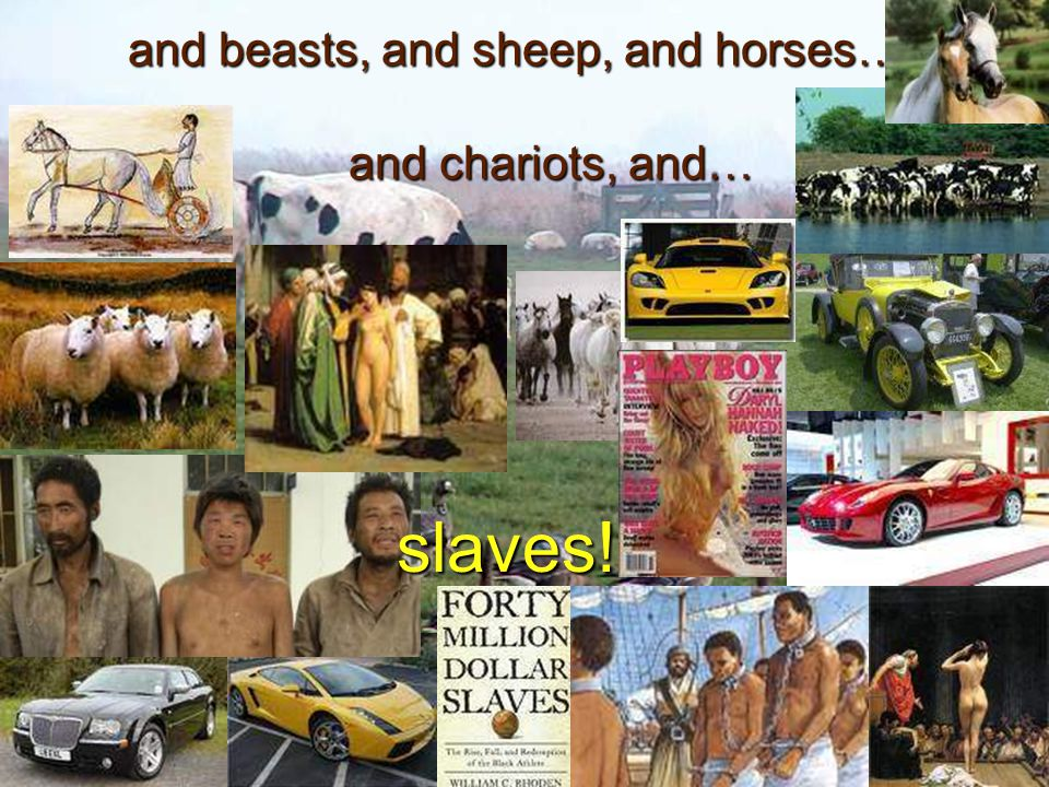 and beasts, and sheep, and horses…