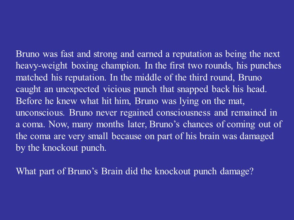 What part of Bruno's Brain did the knockout punch damage