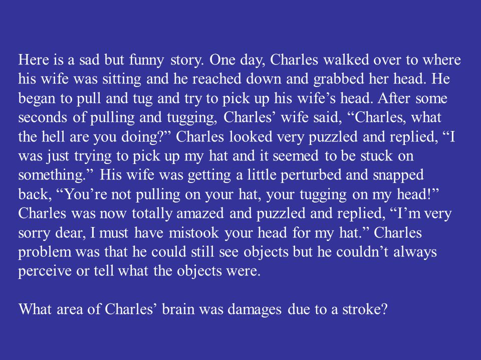 What area of Charles' brain was damages due to a stroke