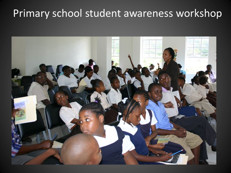 Primary school student awareness workshop
