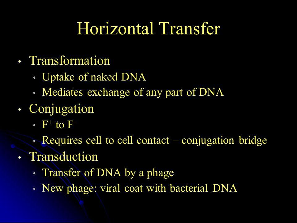 Horizontal Transfer Transformation Conjugation Transduction