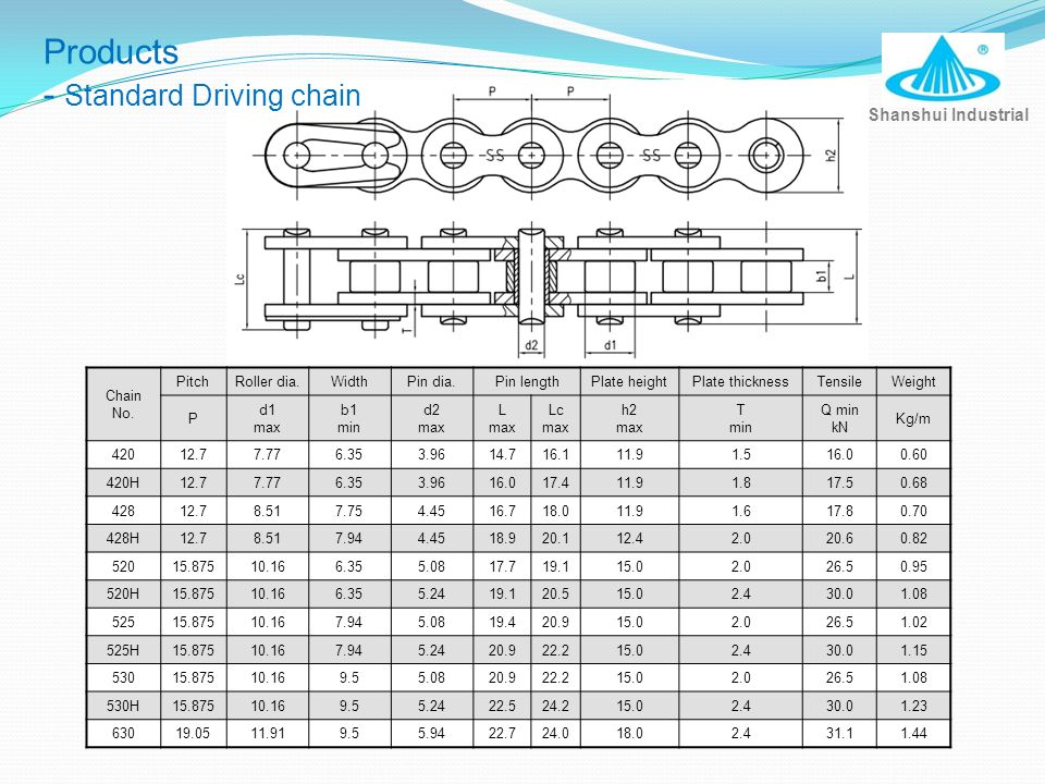 - Standard Driving chain