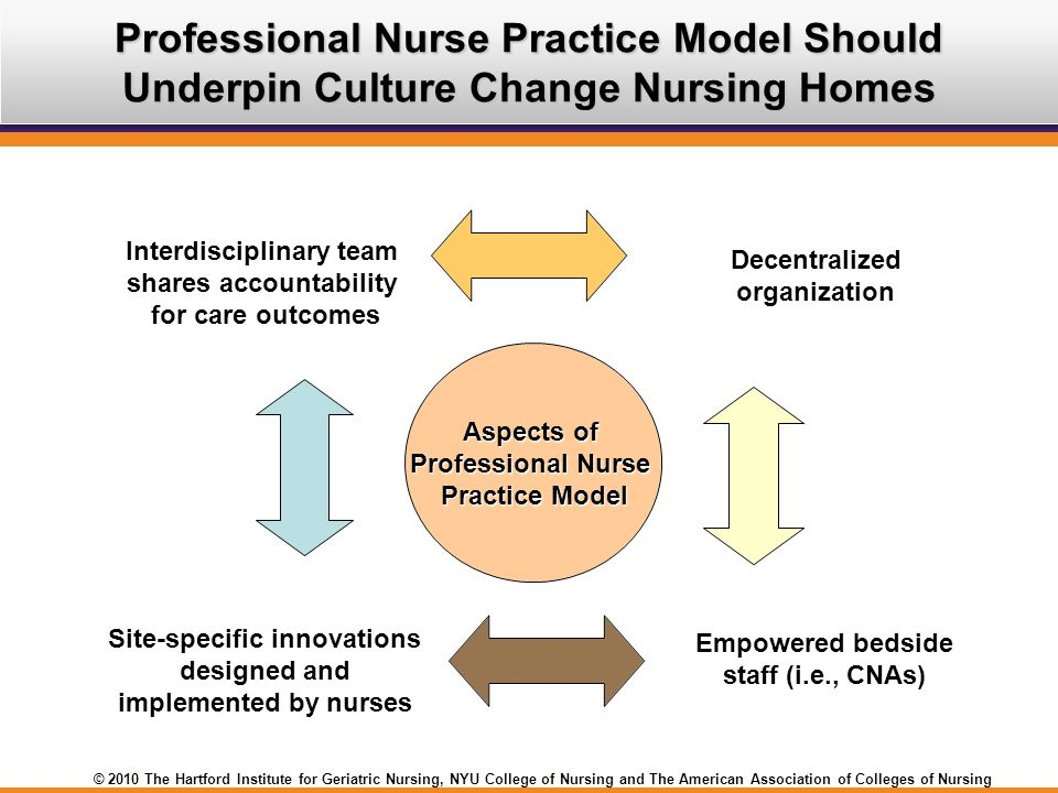 Professional Nurse Practice Model Should Underpin Culture Change Nursing Homes
