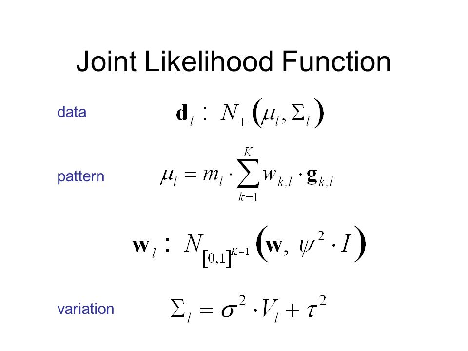 Joint Likelihood Function