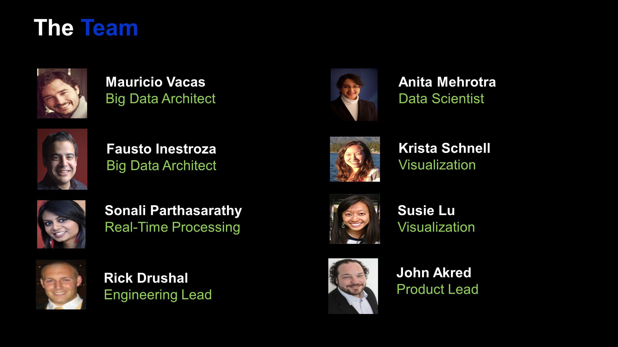 The Team Mauricio Vacas Big Data Architect Anita Mehrotra