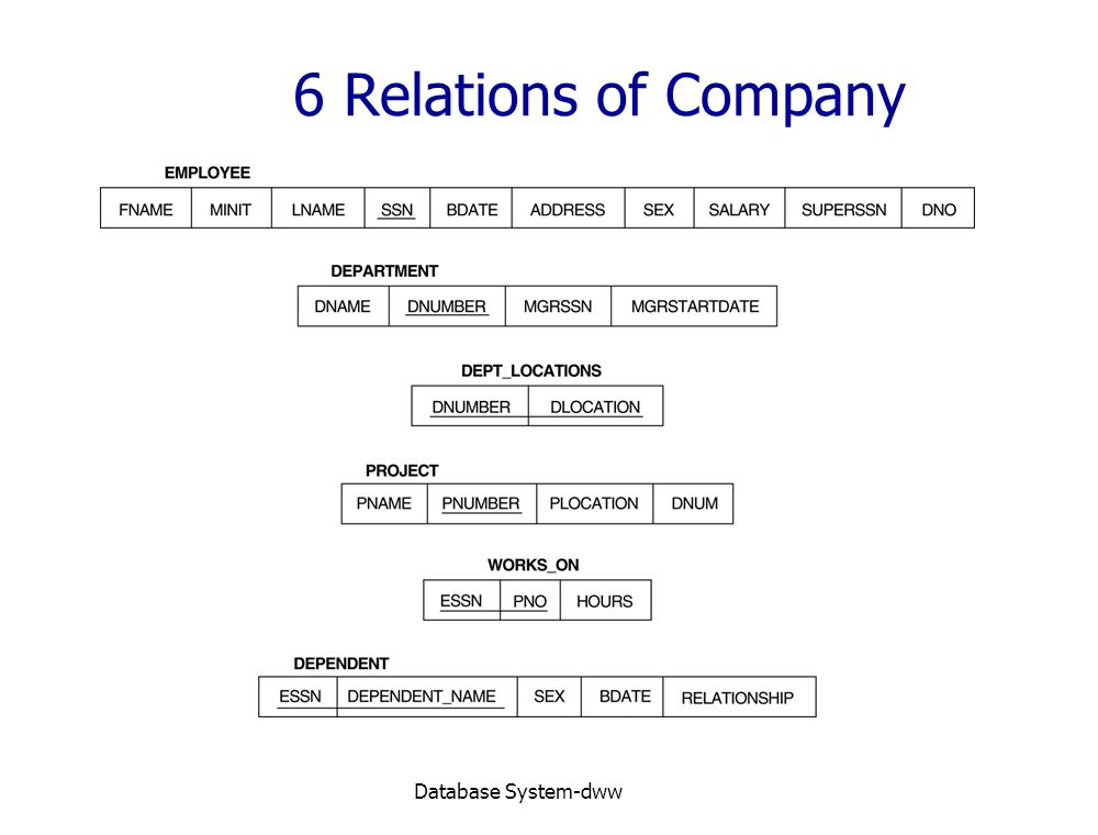 6 Relations of Company Database System-dww