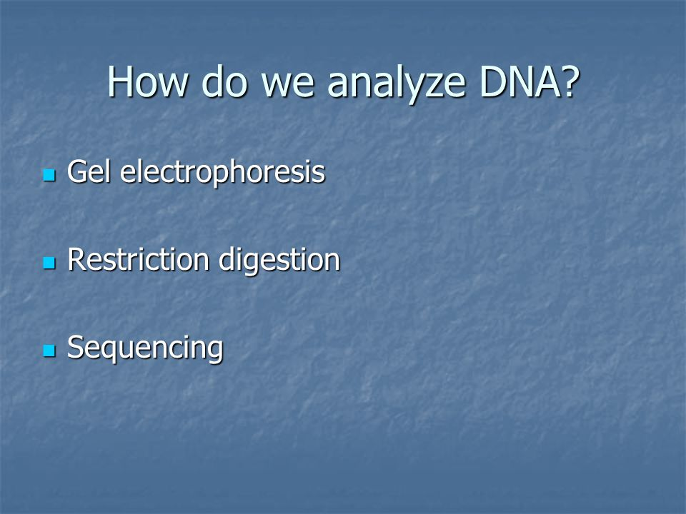 How do we analyze DNA Gel electrophoresis Restriction digestion