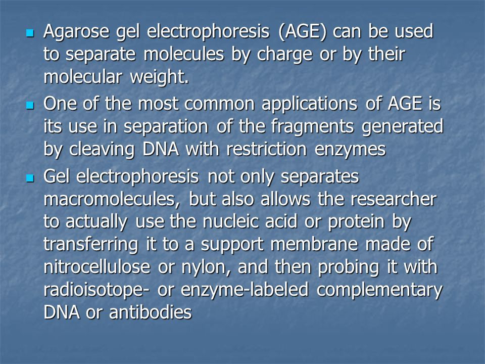 Agarose gel electrophoresis (AGE) can be used to separate molecules by charge or by their molecular weight.