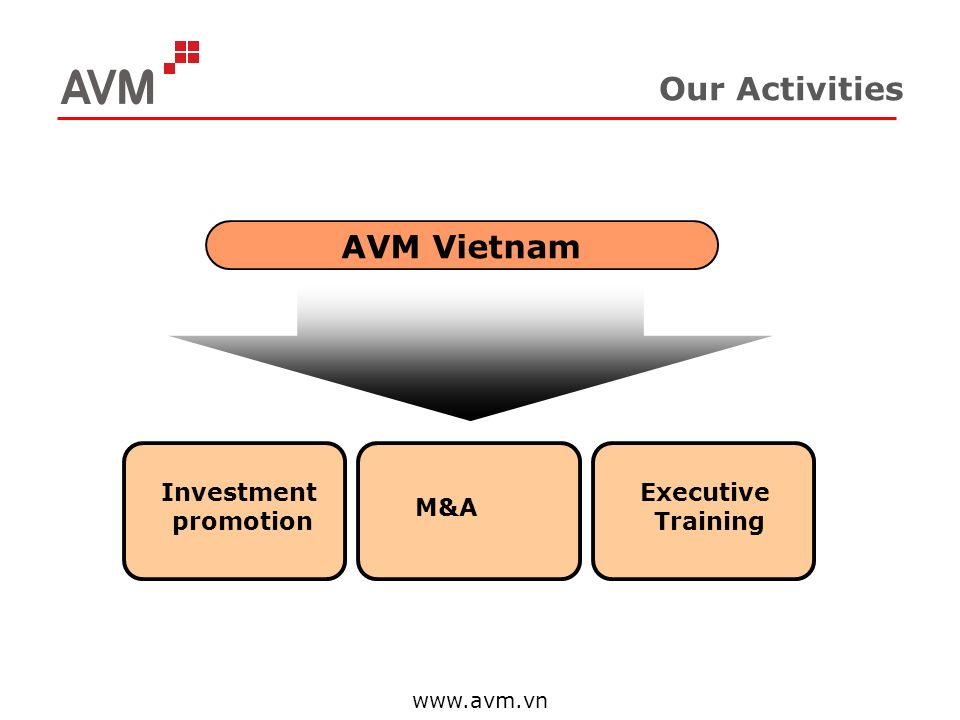 Our Activities AVM Vietnam Investment promotion Executive Training M&A