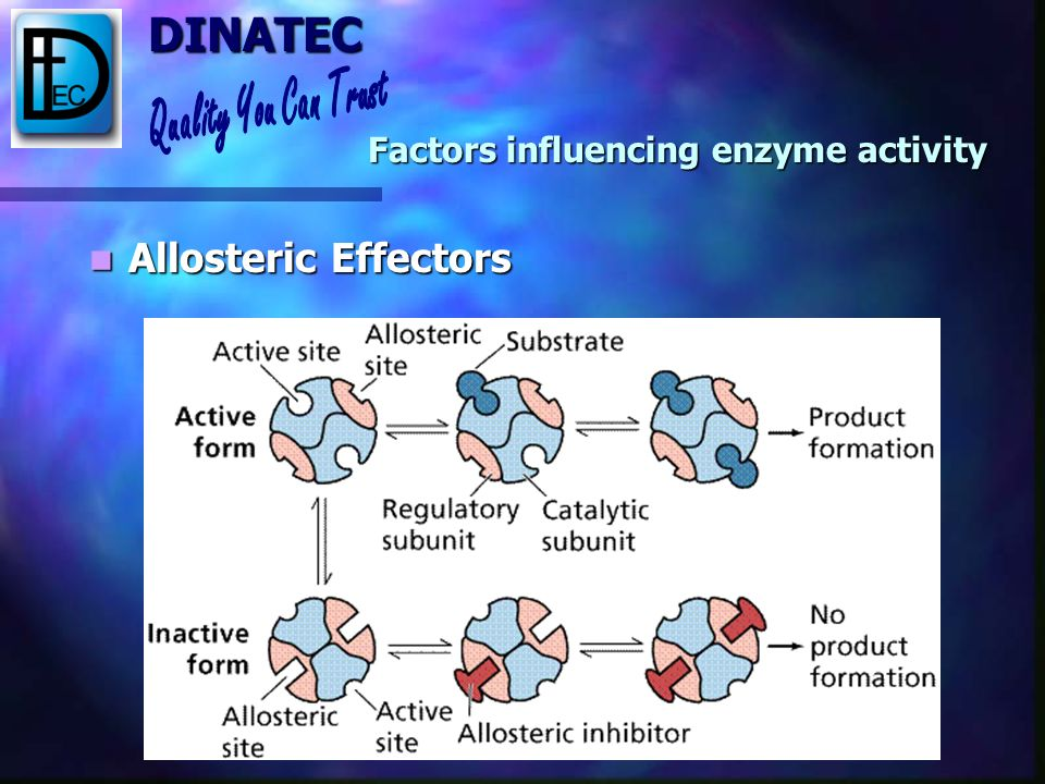 Factors influencing enzyme activity