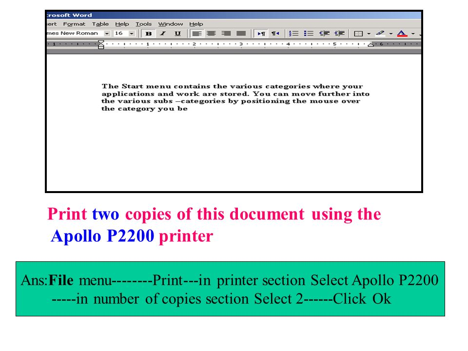 Print two copies of this document using the Apollo P2200 printer