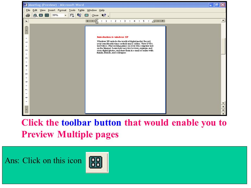 Click the toolbar button that would enable you to Preview Multiple pages