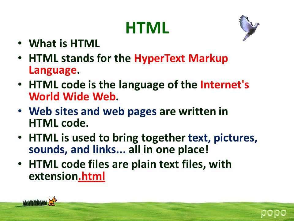 HTML What is HTML HTML stands for the HyperText Markup Language.