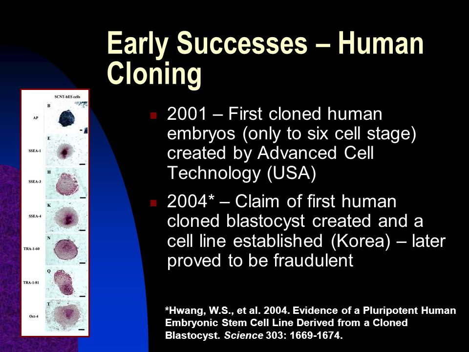 Early Successes – Human Cloning