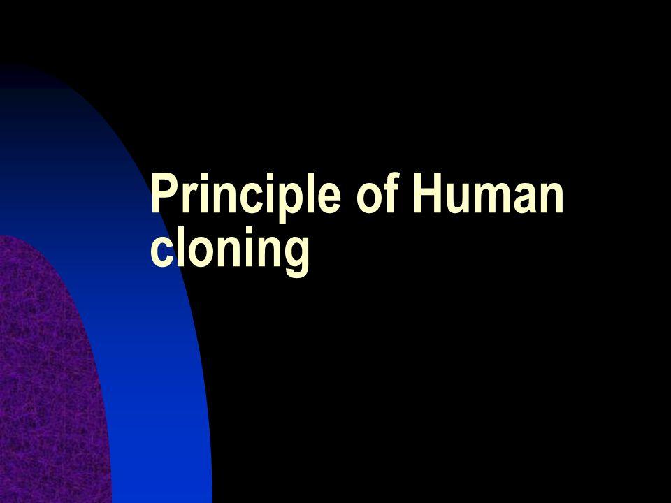 Principle of Human cloning