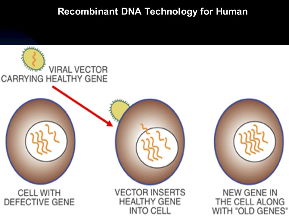 Recombinant DNA Technology for Human