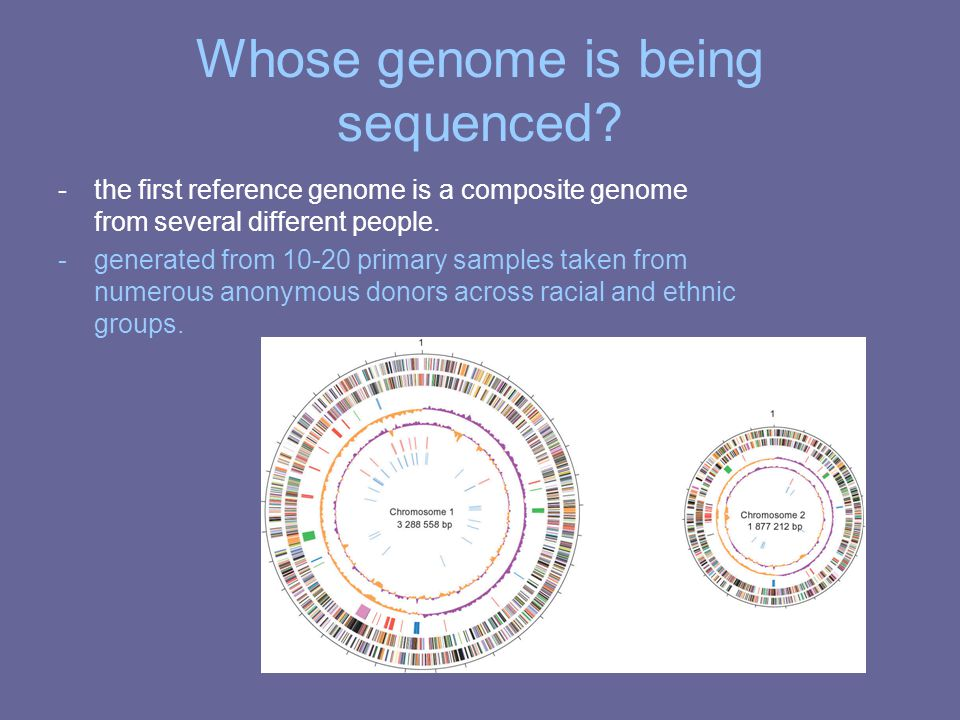 Whose genome is being sequenced