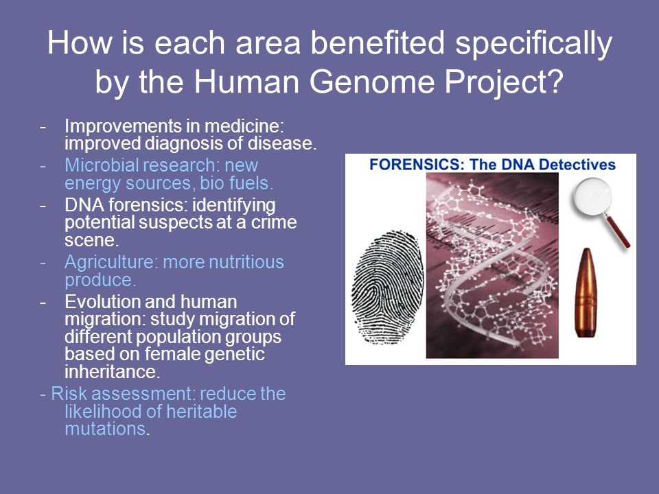 How is each area benefited specifically by the Human Genome Project
