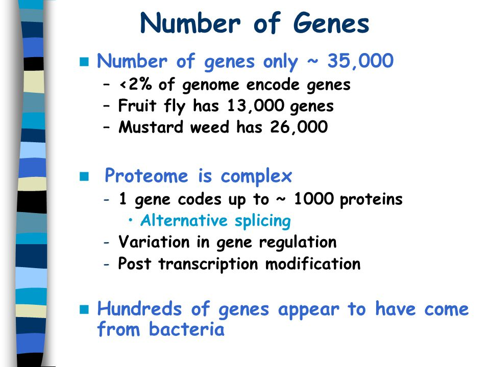 Number of Genes Number of genes only ~ 35,000 Proteome is complex