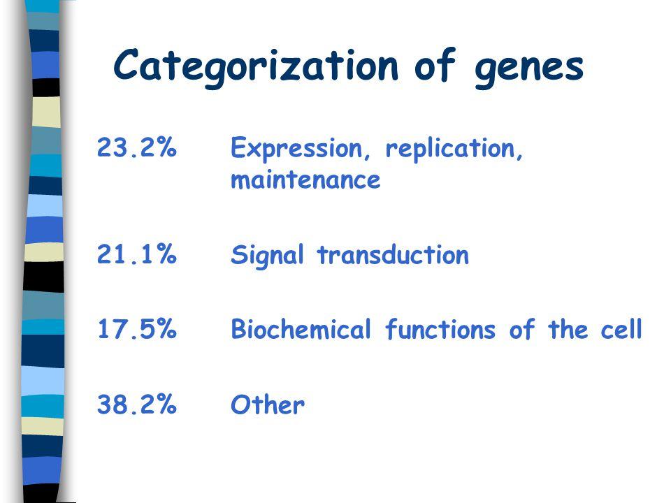 Categorization of genes