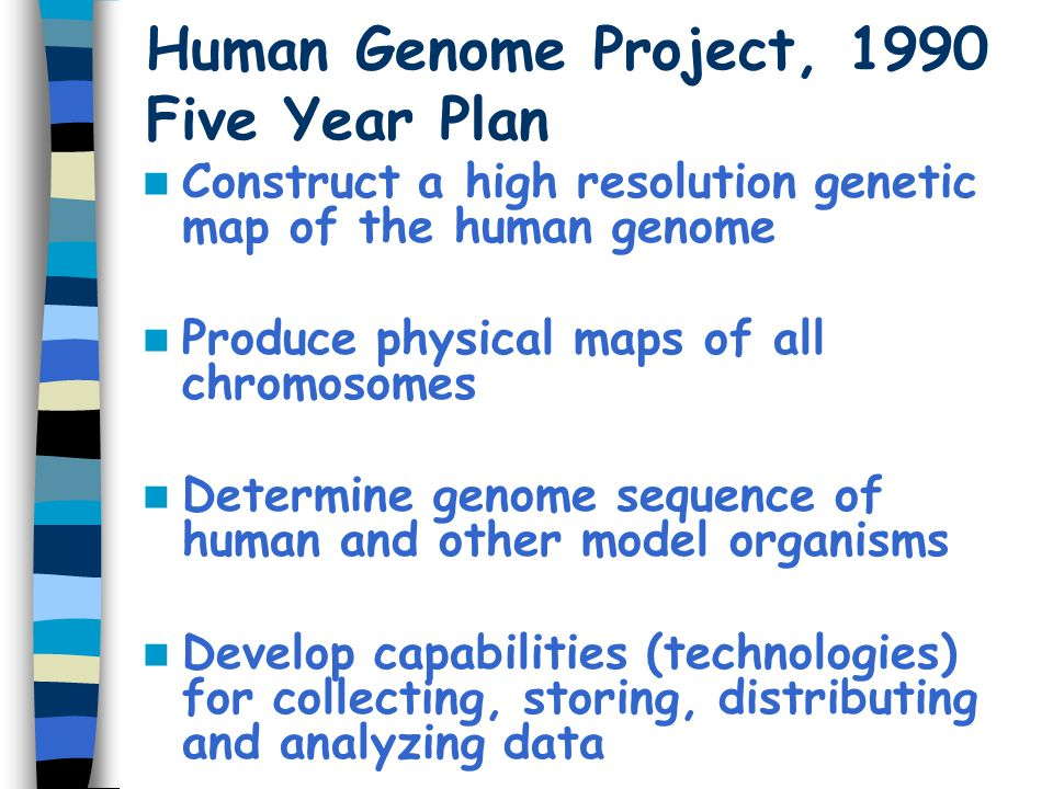 Human Genome Project, 1990 Five Year Plan