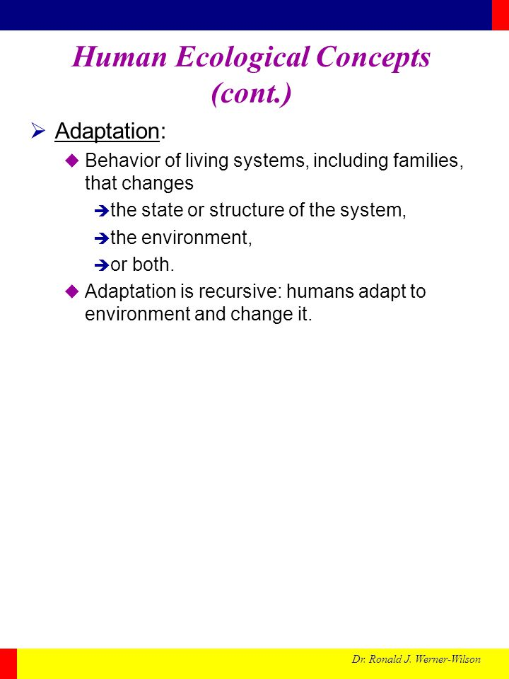 Human Ecological Concepts (cont.)