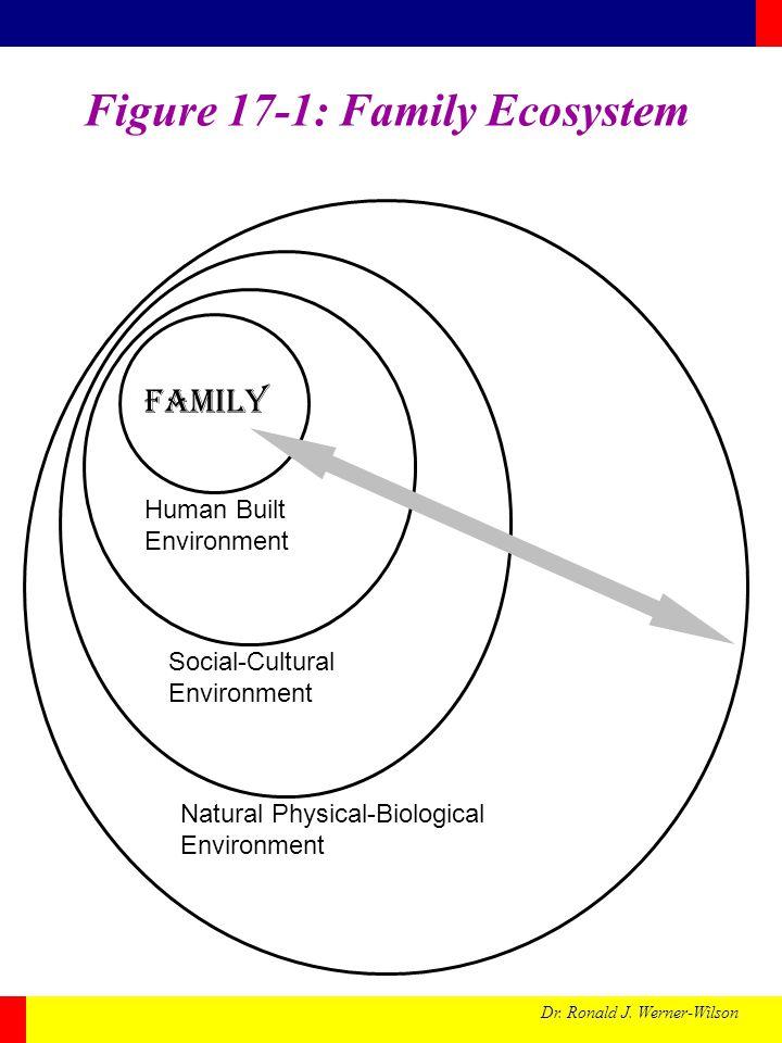Figure 17-1: Family Ecosystem