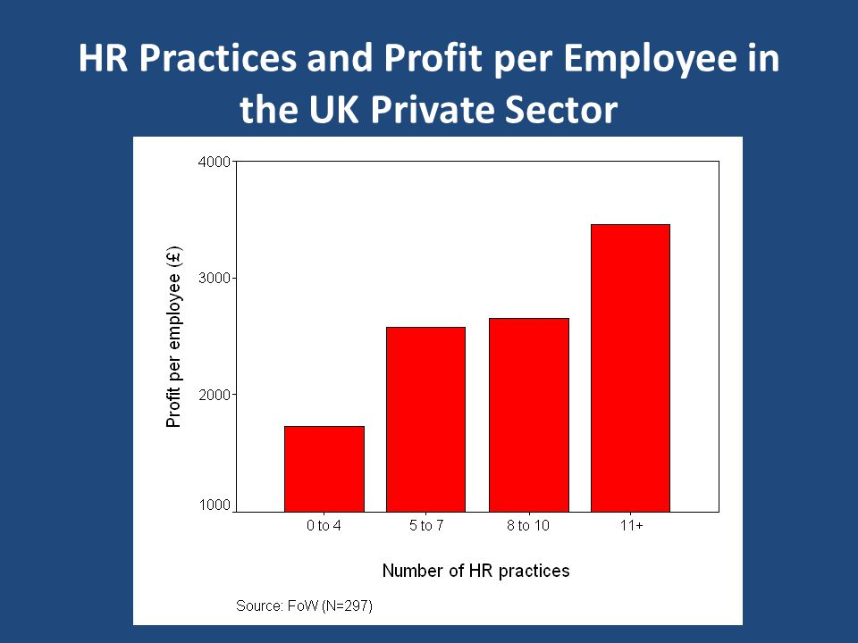 HR Practices and Profit per Employee in the UK Private Sector