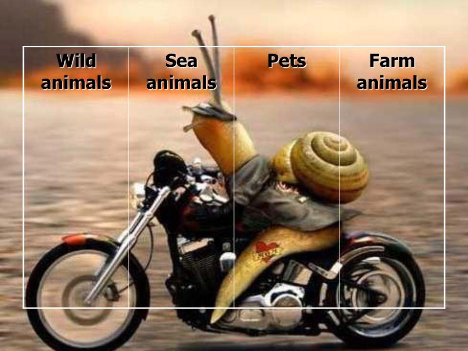 Wild animals Sea animals Pets Farm animals