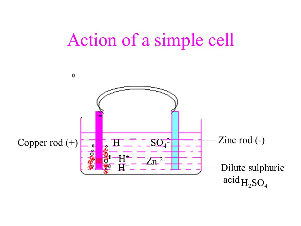 Action of a simple cell Zinc rod (-) Copper rod (+) H+ SO42- H+ Zn 2+