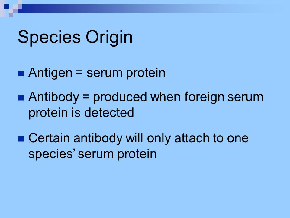 Species Origin Antigen = serum protein