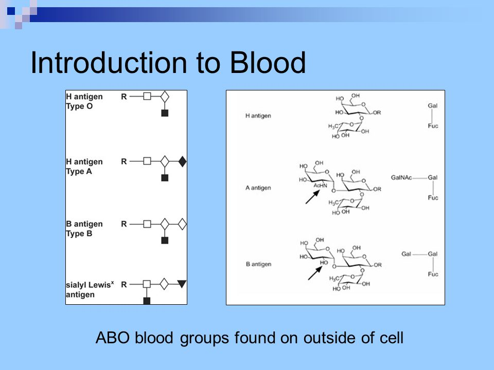 Introduction to Blood ABO blood groups found on outside of cell
