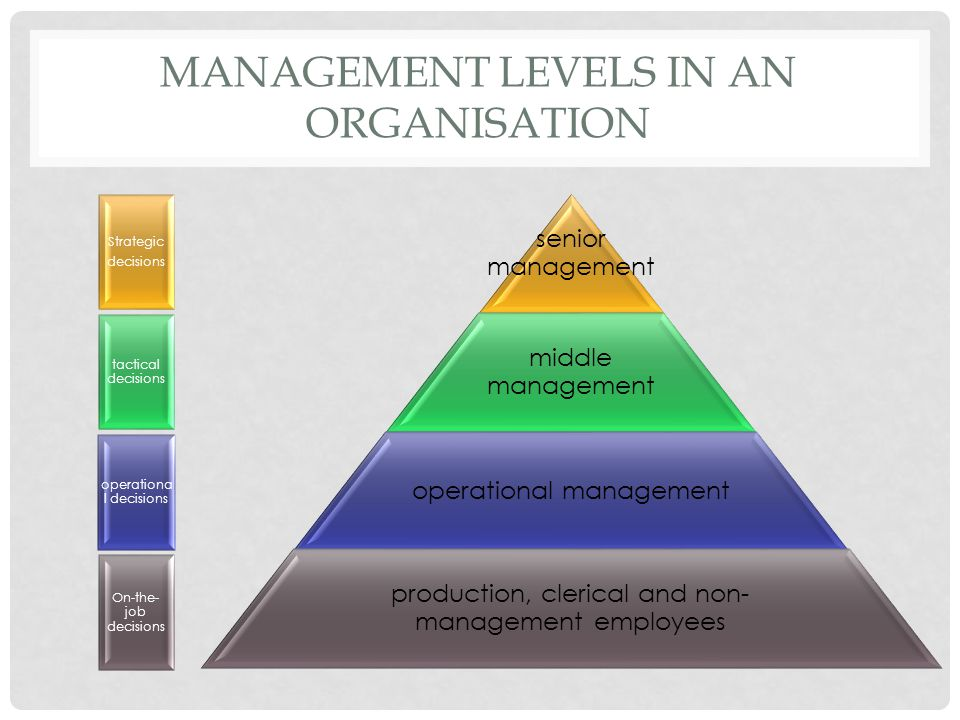 Management levels in an organisation