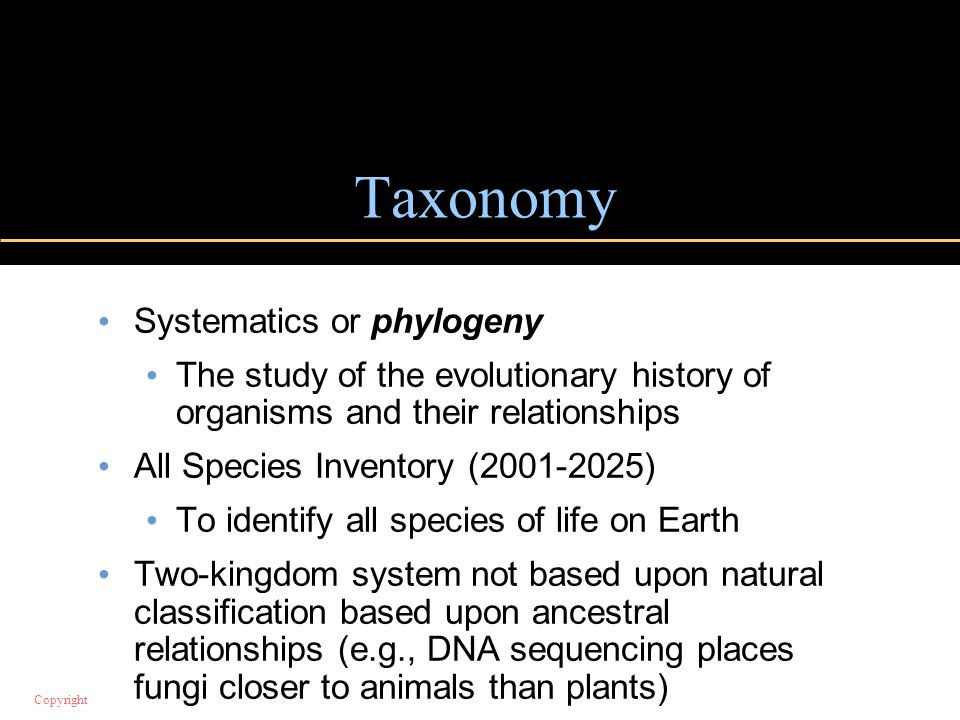 Taxonomy Systematics or phylogeny