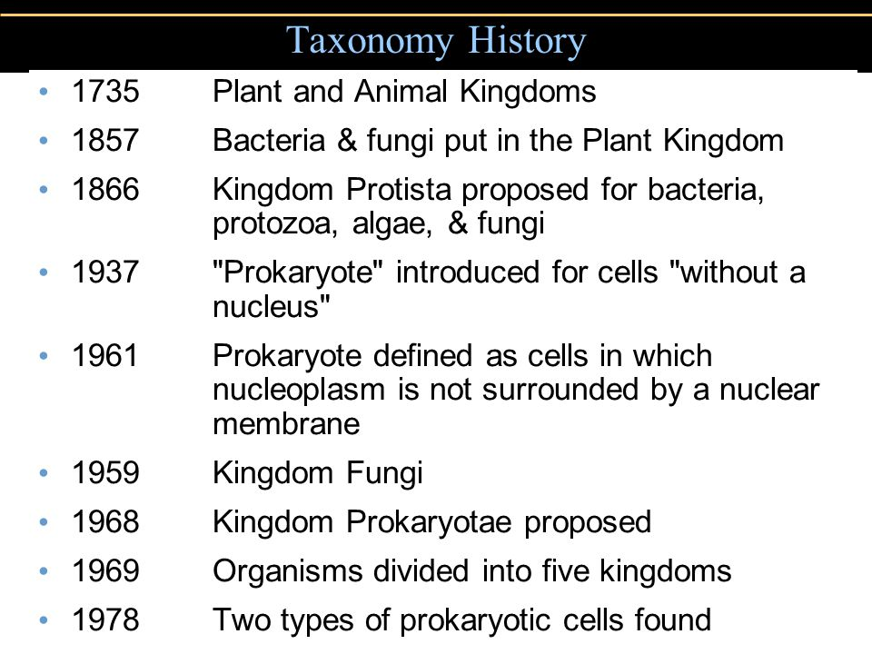 Taxonomy History 1735 Plant and Animal Kingdoms