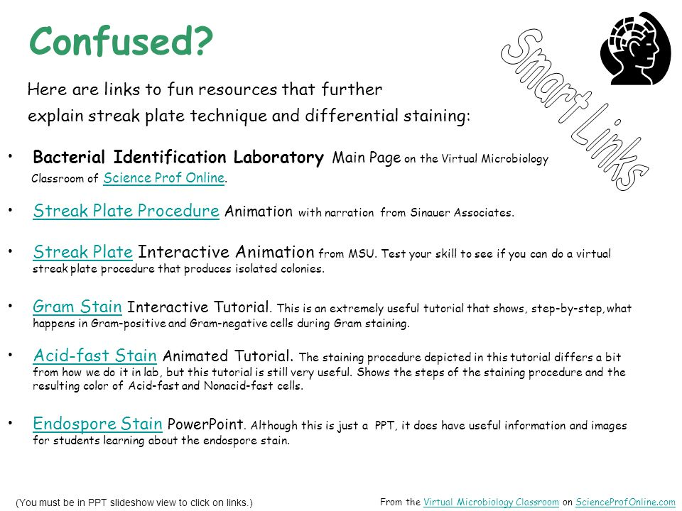 Confused Here are links to fun resources that further Smart Links