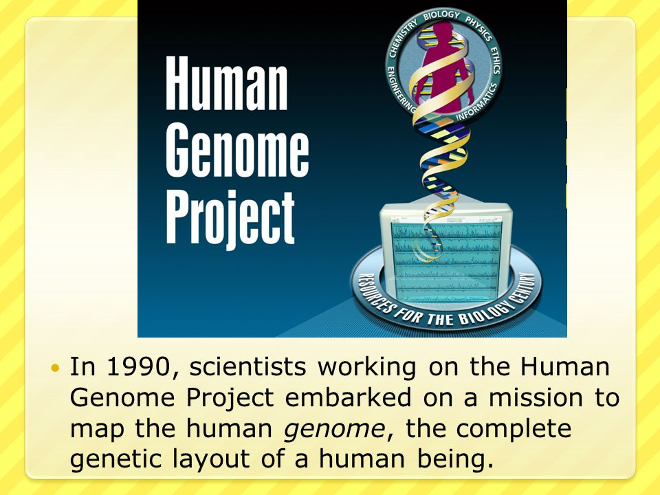 In 1990, scientists working on the Human Genome Project embarked on a mission to map the human genome, the complete genetic layout of a human being.