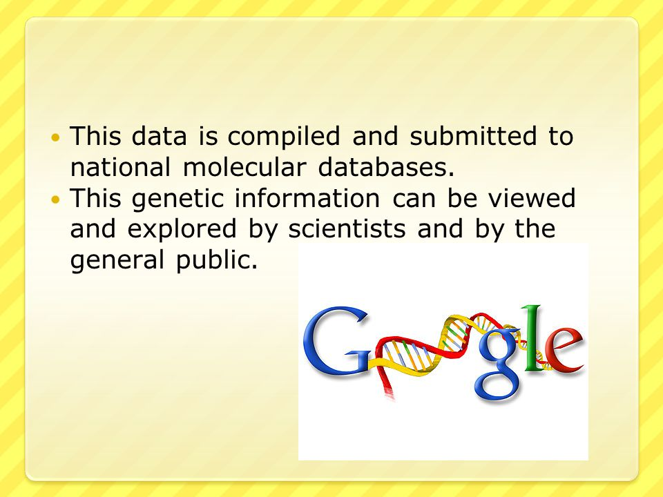 This data is compiled and submitted to national molecular databases.