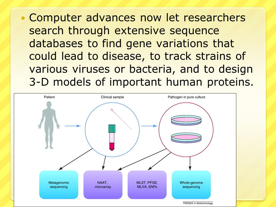 Computer advances now let researchers search through extensive sequence databases to find gene variations that could lead to disease, to track strains of various viruses or bacteria, and to design 3-D models of important human proteins.
